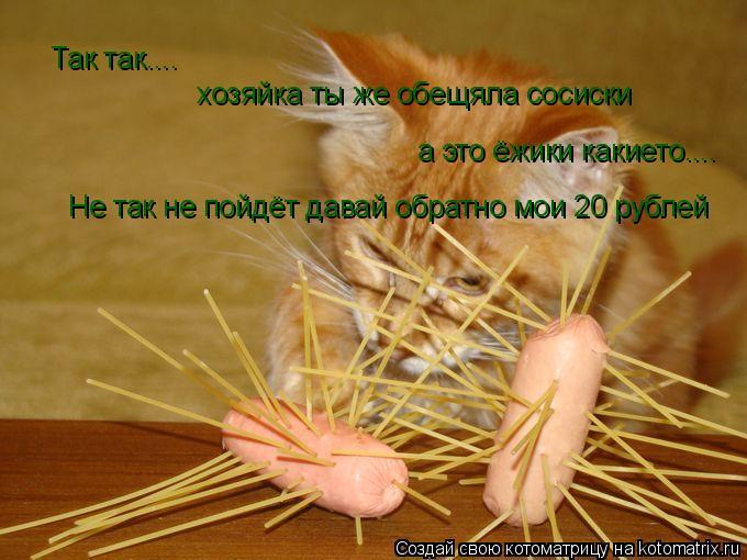 Котоматрица: Так так....  хозяйка ты же обещяла сосиски а это ёжики какието.... Не так не пойдёт давай обратно мои 20 рублей