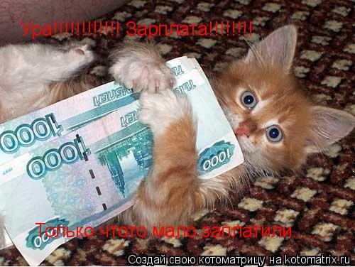 Котоматрица: Ура!!!!!!!!!!!! Зарплата!!!!!!!! Только чтото мало заплатили.......