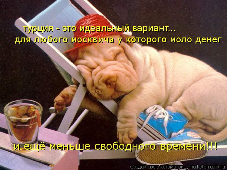 Котоматрица: турция - это идеальный вариант... для любого москвича у которого моло денег и ещё меньше свободного времени!!!