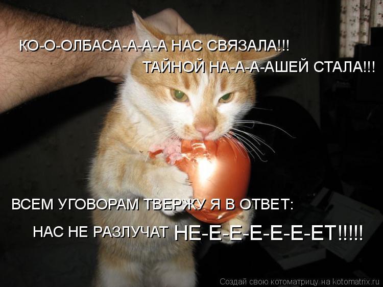 Котоматрица: КО-О-ОЛБАСА-А-А-А НАС СВЯЗАЛА!!! ТАЙНОЙ НА-А-А-АШЕЙ СТАЛА!!! ВСЕМ УГОВОРАМ ТВЕРЖУ Я В ОТВЕТ: НАС НЕ РАЗЛУЧАТ  НЕ-Е-Е-Е-Е-Е-ЕТ!!!!!