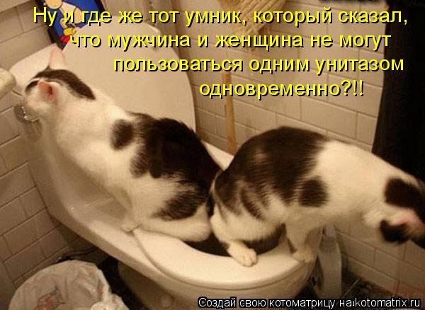 Котоматрица: Ну и где же тот умник, который сказал, что мужчина и женщина не могут пользоваться одним унитазом одновременно?!!