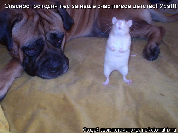 Котоматрица: Спасибо господин пес за наше счастливое детство! Ура!!!