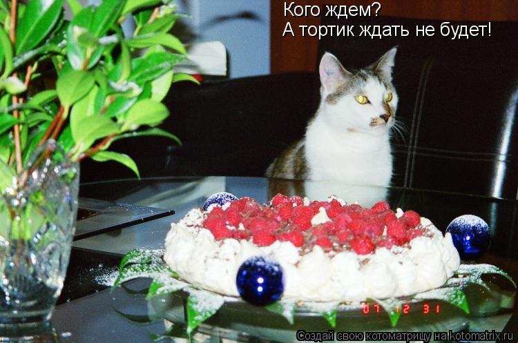 Котоматрица: Кого ждем? А тортик ждать не будет!
