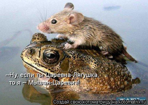 Котоматрица: --Ну, если ты Царевна-Лягушка, то я -- Мышан-Царевич!
