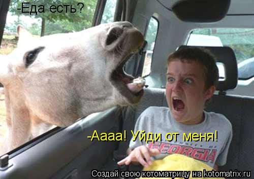 Котоматрица: -Еда есть? -Аааа! Уйди от меня!