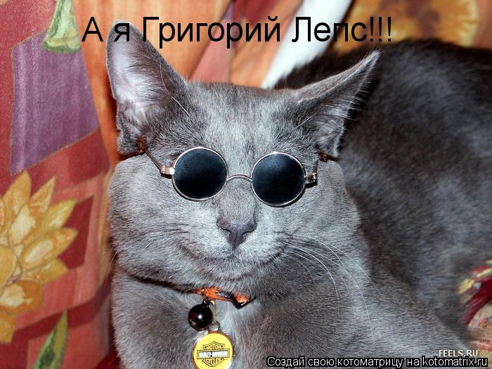 Котоматрица: А я Григорий Лепс!!!