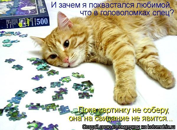 Котоматрица: И зачем я похвастался любимой, что в головоломках спец? Пока картинку не соберу, она на свидание не явится...
