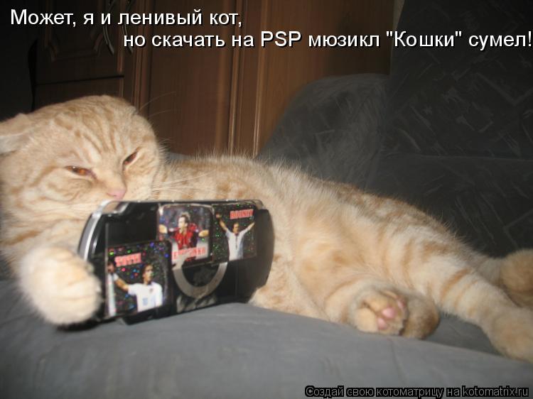 """Котоматрица: Может, я и ленивый кот,  но скачать на PSP мюзикл """"Кошки"""" сумел!"""