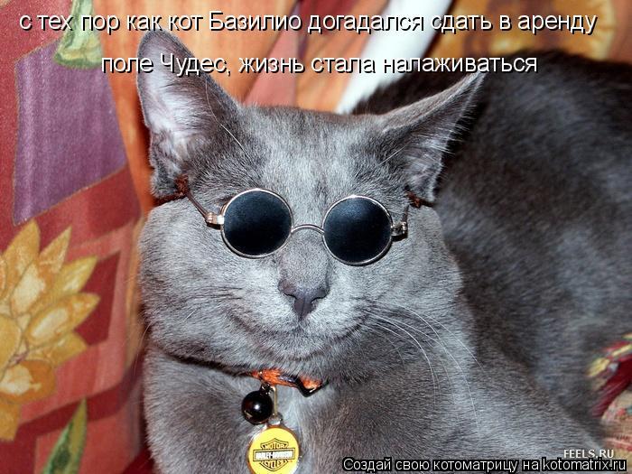 Котоматрица: с тех пор как кот Базилио догадался сдать в аренду  поле Чудес, жизнь стала налаживаться