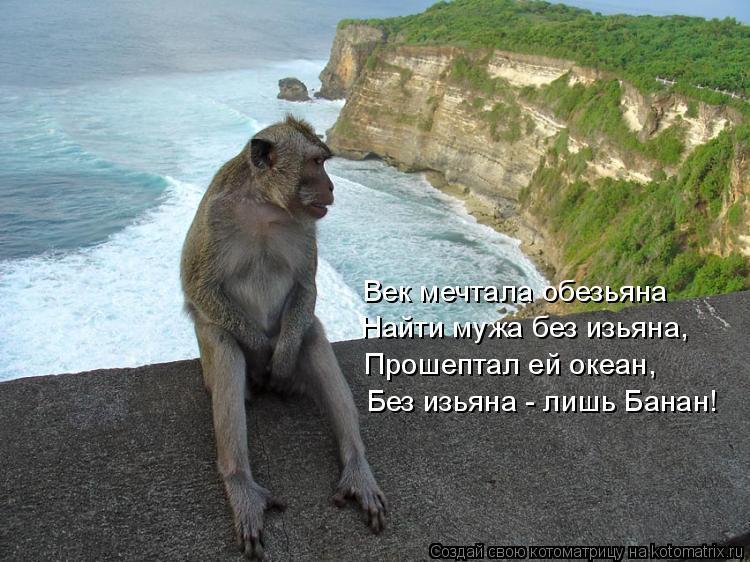 Котоматрица: Без изьяна - лишь Банан! Век мечтала обезьяна Прошептал ей океан, Найти мужа без изьяна,