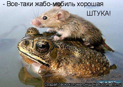 Котоматрица: - Все-таки жабо-мобиль хорошая  - Все-таки жабо-мобиль хорошая  ШТУКА!