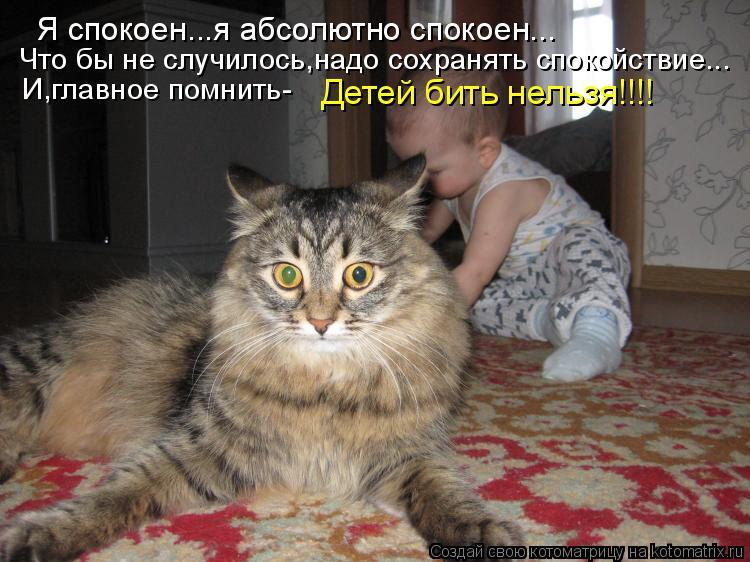 Котоматрица: Я спокоен...я абсолютно спокоен... Что бы не случилось,надо сохранять спокойствие... И,главное помнить- Детей бить нельзя!!!!