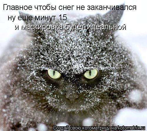 Котоматрица: Главное чтобы снег не заканчивался  ну еще минут 15 и маскировка будет идеальной
