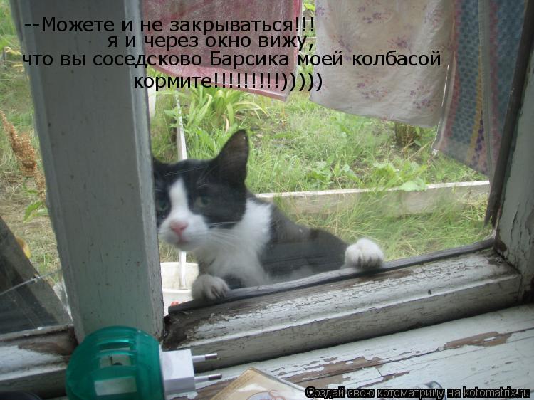 Котоматрица: --Можете и не закрываться!!! я и через окно вижу, что вы соседсково Барсика моей колбасой кормите!!!!!!!!!)))))