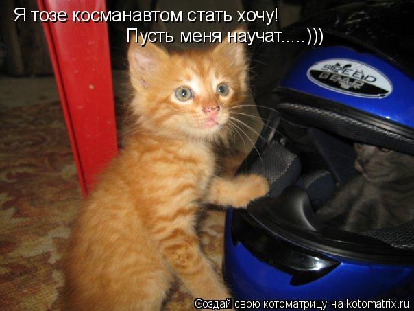 Котоматрица: Я тозе косманавтом стать хочу! Пусть меня научат.....)))