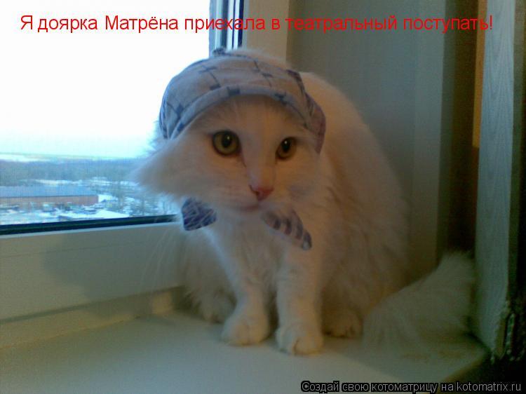 Котоматрица: Я доярка Матрёна приехала в театральный поступать!
