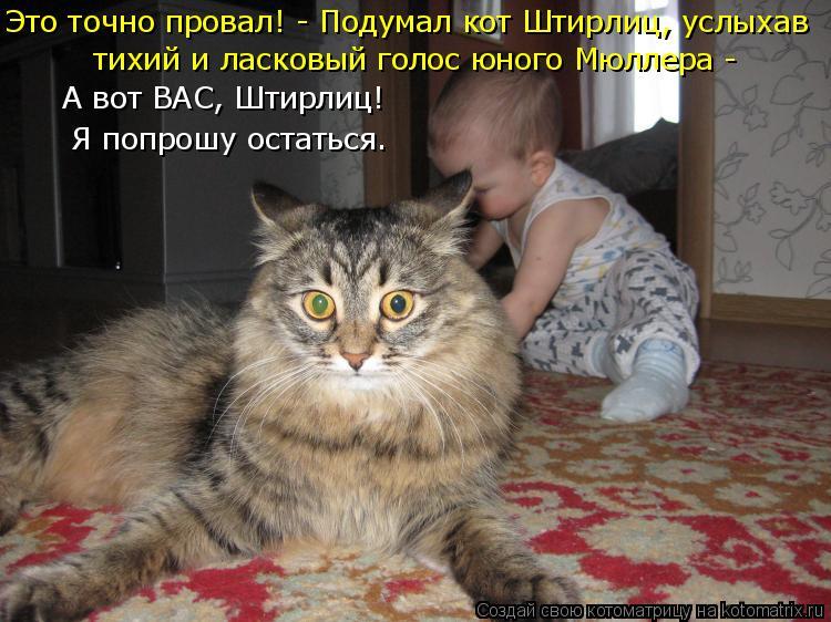 Котоматрица: Это точно провал! - Подумал кот Штирлиц, услыхав  тихий и ласковый голос юного Мюллера -  А вот ВАС, Штирлиц! Я попрошу остаться.