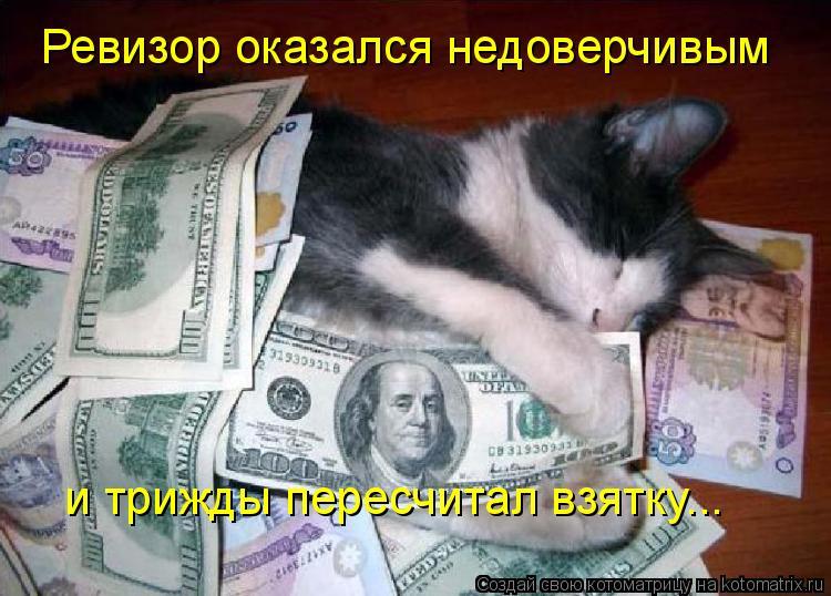 Котоматрица: Ревизор оказался недоверчивым  и трижды пересчитал взятку...