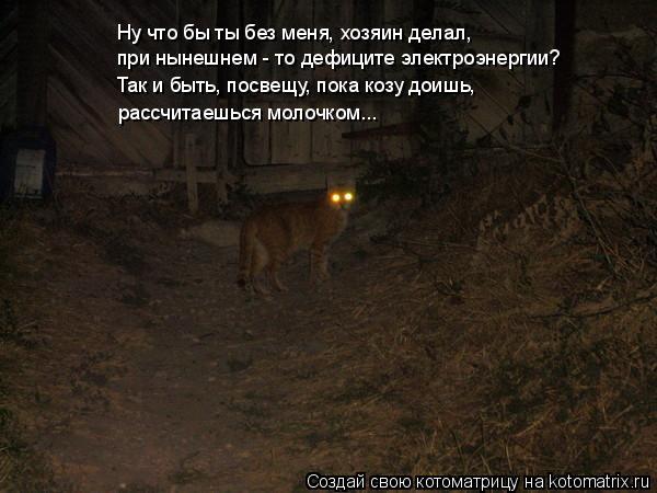 Котоматрица: Ну что бы ты без меня, хозяин делал, при нынешнем - то дефиците электроэнергии? Так и быть, посвещу, пока козу доишь, рассчитаешься молочком...