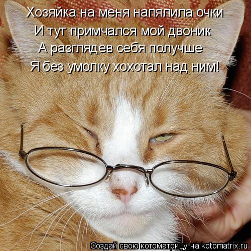 Котоматрица: Хозяйка на меня напялила очки И тут примчался мой двоник А разглядев себя получше Я без умолку хохотал над ним!