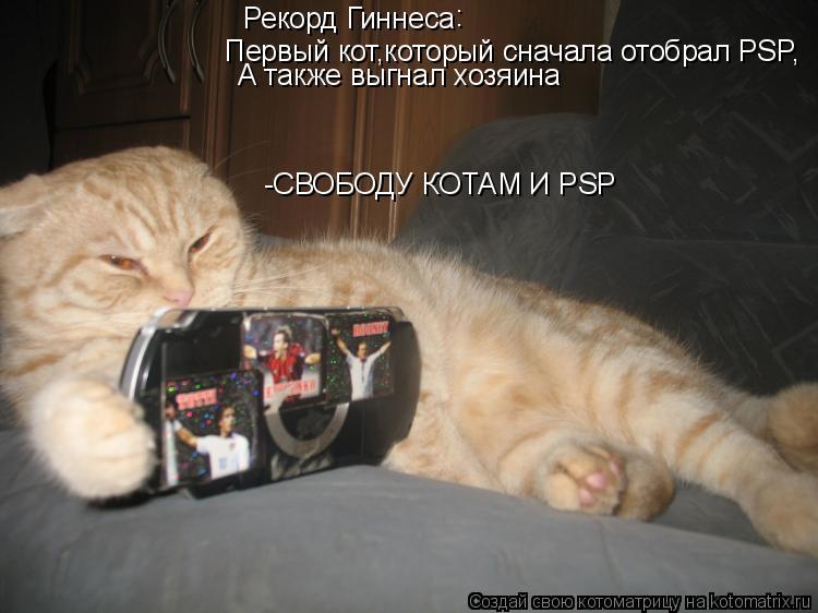 Котоматрица: Рекорд Гиннеса : Первый кот,который сначала отобрал PSP, А также выгнал хозяина -СВОБОДУ КОТАМ И PSP