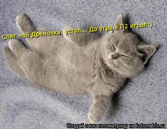 Котоматрица: Спит мой Дрёмочка, устал... До утра в Л2 играл:)