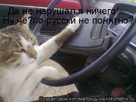 Котоматрица: Да не нарушал я ничего!.... Ну чё?по-русски не понятно?