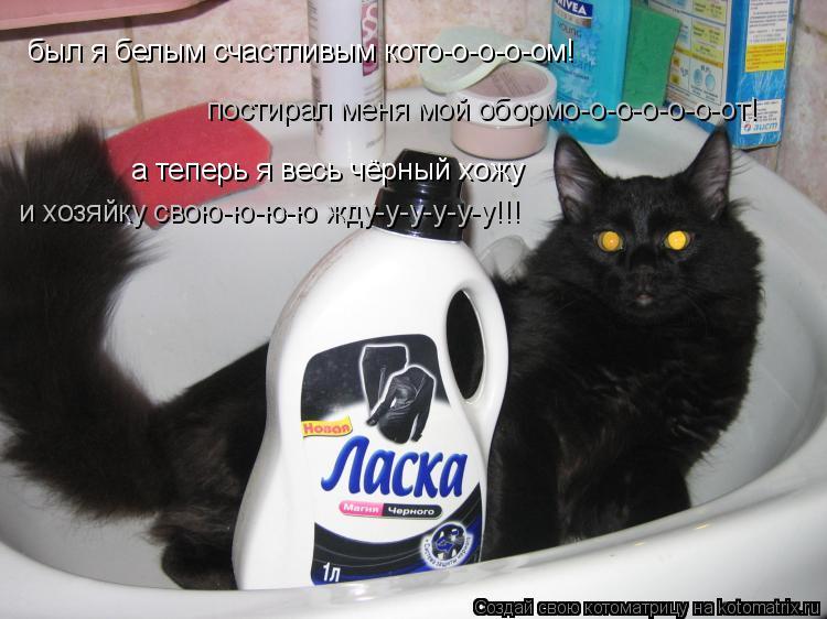 Котоматрица: был я белым счастливым кото-о-о-о-ом! постирал меня мой обормо-о-о-о-о-о-от! а теперь я весь чёрный хожу и хозяйку свою-ю-ю-ю жду-у-у-у-у-у!!!