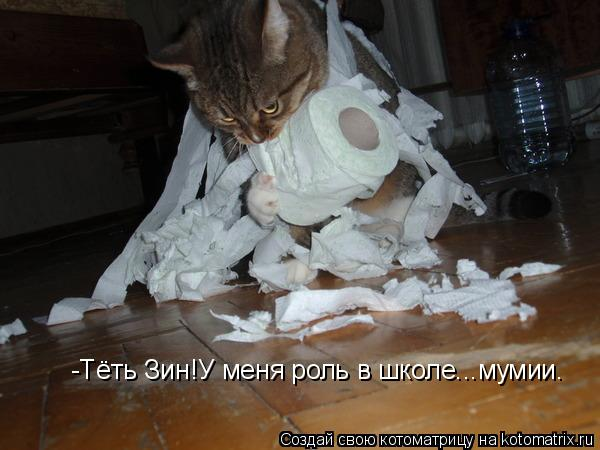 Котоматрица: -Тёть Зин!У меня роль в школе...мумии.