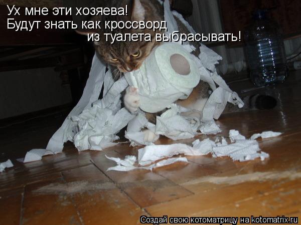 Котоматрица: Ух мне эти хозяева! Будут знать как кроссворд  из туалета выбрасывать!