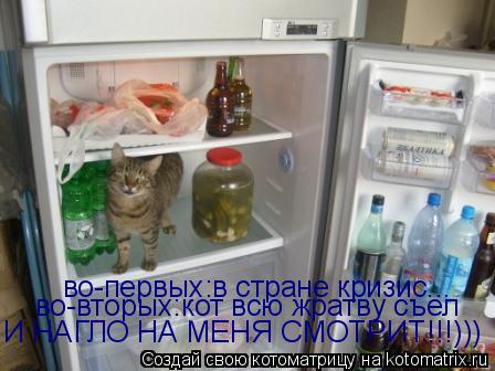 Котоматрица: во-первых:в стране кризис... во-вторых:кот всю жратву съел И НАГЛО НА МЕНЯ СМОТРИТ!!!)))