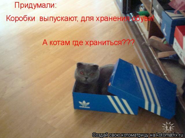 Котоматрица: Придумали: Коробки  выпускают, для хранения обуви! А котам где храниться???
