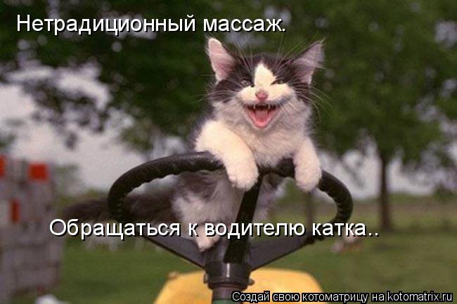 Котоматрица: Нетрадиционный массаж.  Обращаться к водителю катка.…