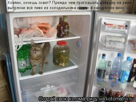 Котоматрица: Хозяин, хочешь совет? Прежде чем приглашать девушку на ужин вытряхни всё пиво из холодильника и купи французское вино