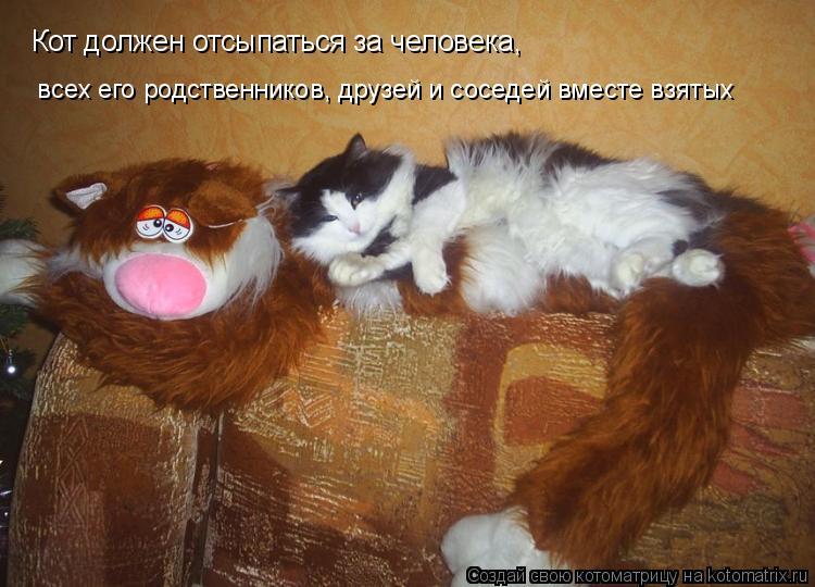 Котоматрица: Кот должен отсыпаться за человека,   всех его родственников, друзей и соседей вместе взятых
