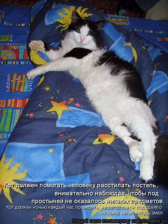 Котоматрица: Кот должен помогать человеку расстилать постель,  внимательно наблюдая, чтобы под  простыней не оказалось никаких предметов. Кот должен но