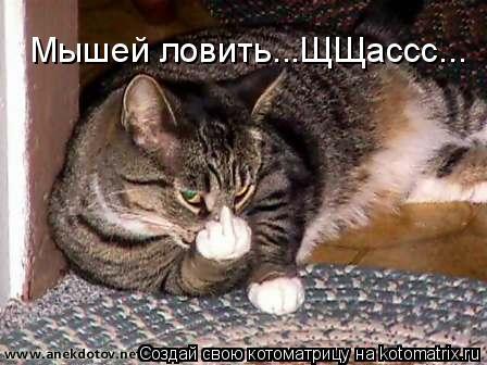 Котоматрица: Мышей ловить...ЩЩассс...