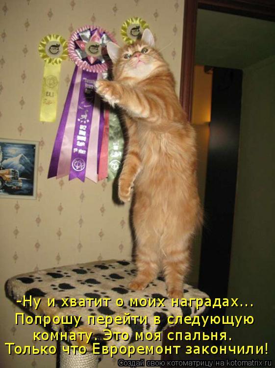 Котоматрица: -Ну и хватит о моих наградах... Попрошу перейти в следующую комнату. Это моя спальня. Только что Евроремонт закончили!