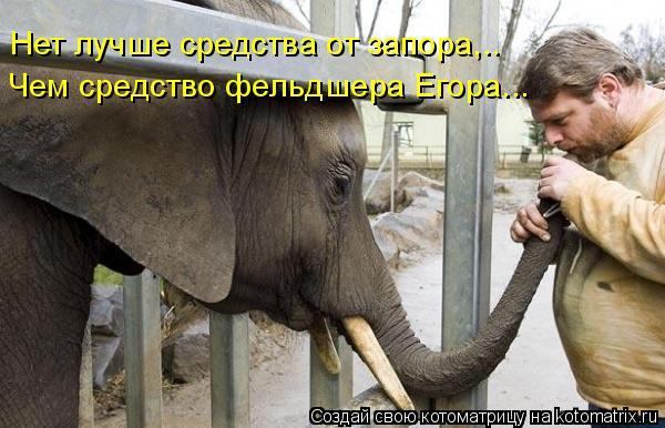 Котоматрица: Нет лучше средства от запора,.. Чем средство фельдшера Егора...