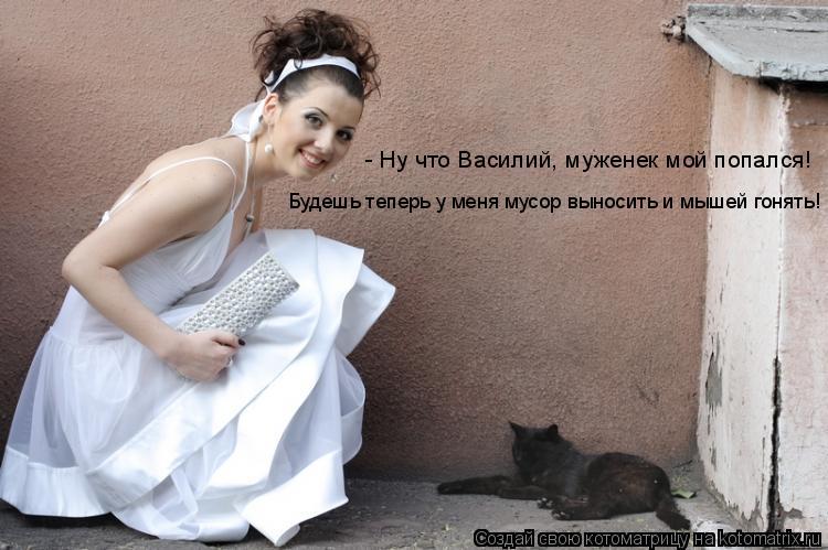 Котоматрица: - Ну что Василий, муженек мой попался!  Будешь теперь у меня мусор выносить и мышей гонять!