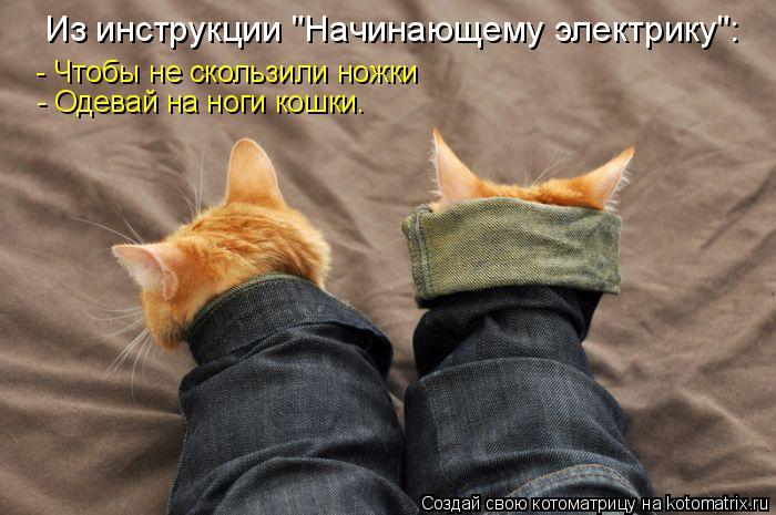 """Котоматрица: Из инструкции """"Начинающему электрику"""": - Чтобы не скользили ножки  - Одевай на ноги кошки."""