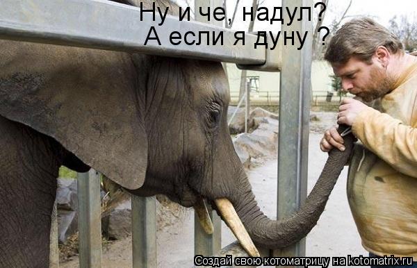 http://kotomatrix.ru/images/lolz/2009/08/20/343313.jpg