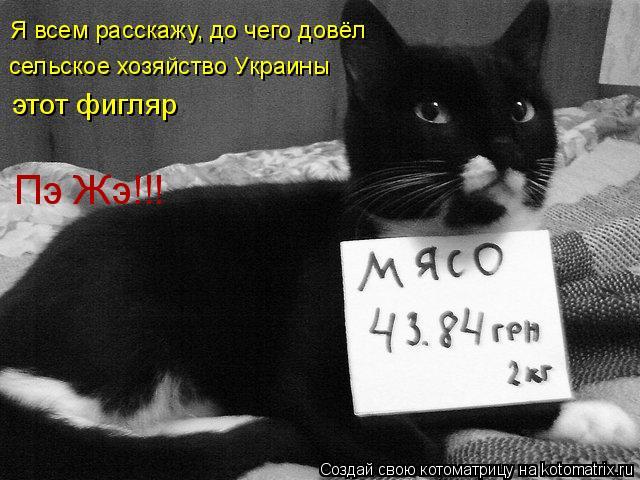 Котоматрица: Я всем расскажу, до чего довёл сельское хозяйство Украины этот фигляр Пэ Жэ!!!