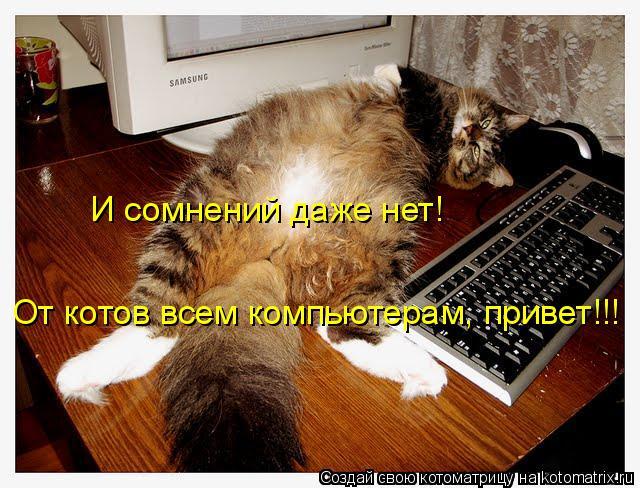 Котоматрица: И сомнений даже нет! От котов всем компьютерам, привет!!!