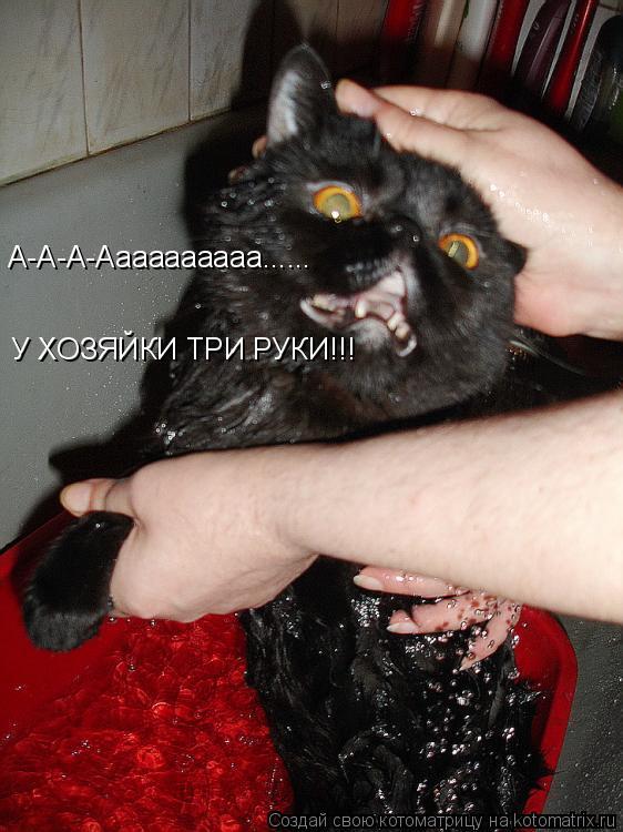 Котоматрица: А-А-А-Аааааааааа...... У ХОЗЯЙКИ ТРИ РУКИ!!!