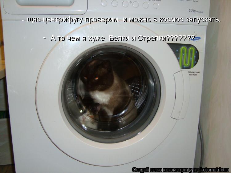 Котоматрица: щяс центрифугу проверим, и можно в космос запускать.  А то чем я хуже  Белки и Стрелки??????? - -