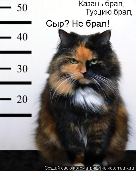 Котоматрица: Казань брал, Турцию брал, Сыр? Не брал!