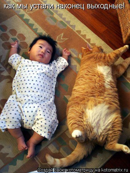 Котоматрица: как мы устали наконец выходные!