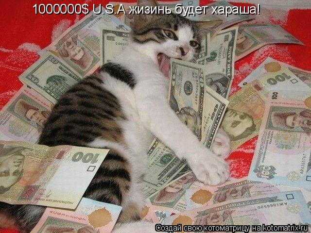 Котоматрица: 1000000$ U.S.A жизинь будет хараша!