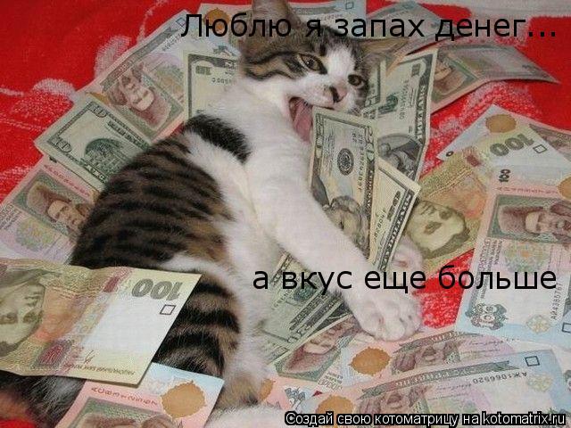 Котоматрица: Люблю я запах денег... а вкус еще больше